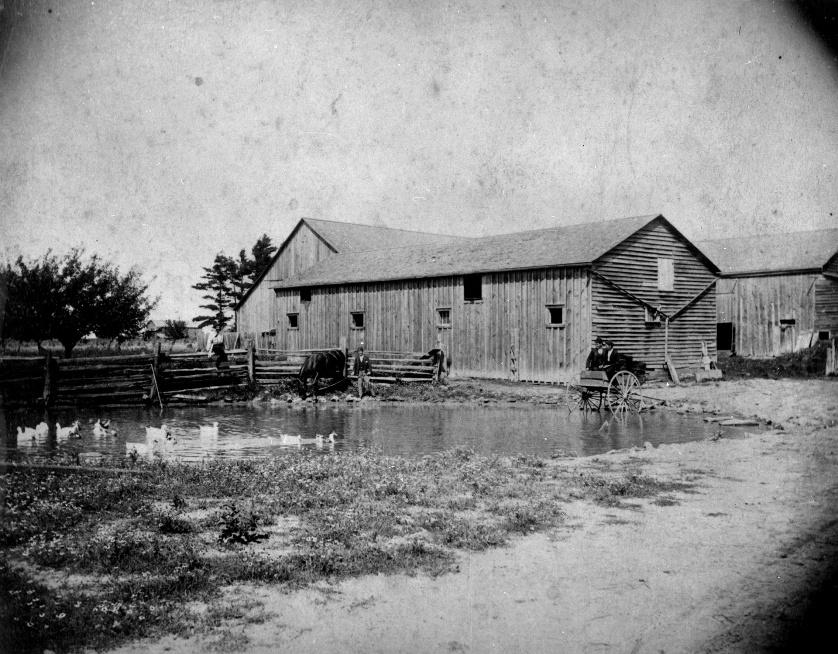 John Goulding Barns