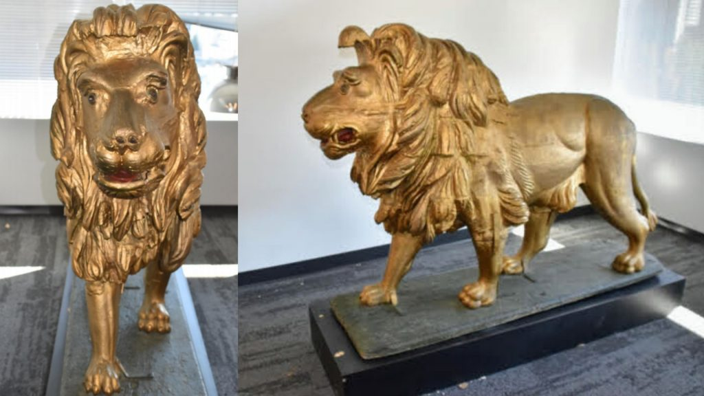 The Golden Lion, front and side, after his recent spa treatment.